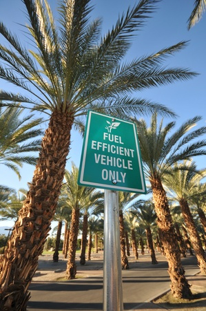 Parking sign for fuel efficient vehicles only with palm trees in parking lot.