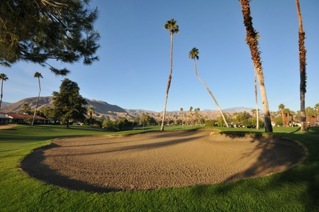 Large sand trap or bunker with palm trees and mountains.