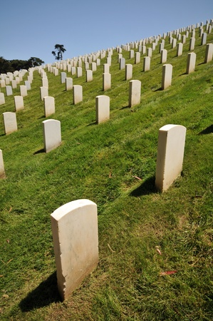 Rows of white marble headstones in a row in a cemetery  Stock Photo