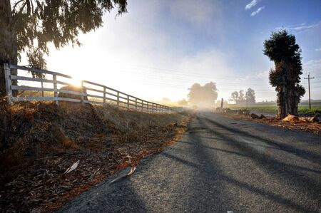 wine road: An asphalt road shadowed by a white fence and fog in the wine country