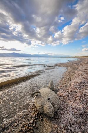 fish toy: Toy pesci sulla riva del Salton Sea con le onde e le bolle