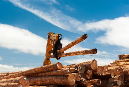 Two logs are lifted by a loader onto a pille of timber