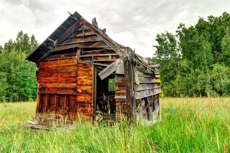 An old wooden shed in the middle of a field by the forest photo