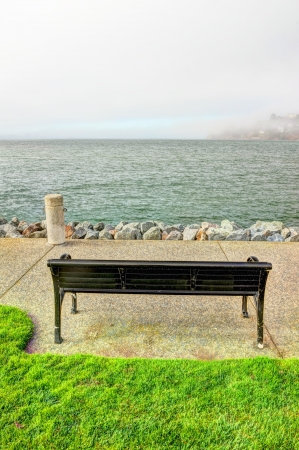 San Francisco bay view with bench and grass photo