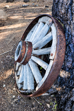 covered wagon: Old wheel from a covered wagon leans agains a pine tree Stock Photo