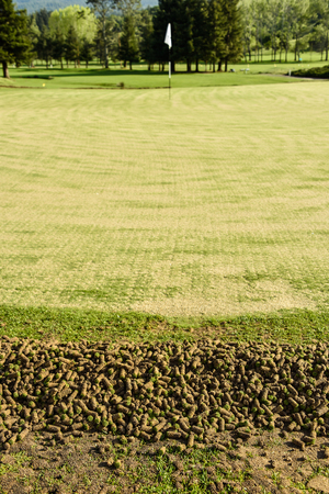 aeration: A pile of cores from the aeration process on the side of a green Stock Photo