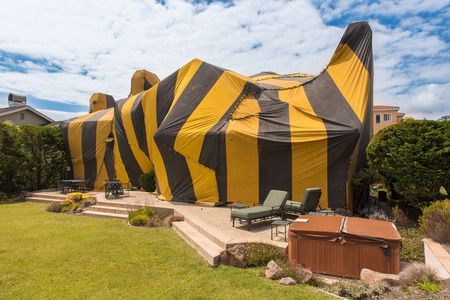 termite: Brown and yellow striped tent covers a house for fumigation process Stock Photo