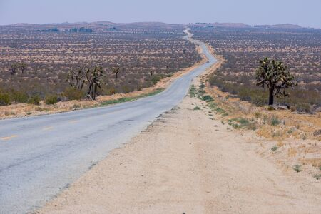 A road with a dashed yellow line leads to the horizon in the desert. Stock Photo
