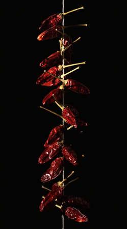 Calabraise piment rouge tresser