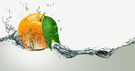 ジューシーなオレンジ色の緑は水のしぶきの背景に残します。