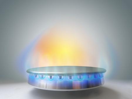 distributor: Natural and household gas.