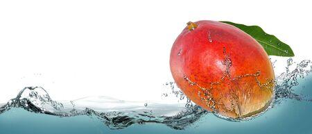 Tropical fruit mango in a spray of water. Reklamní fotografie