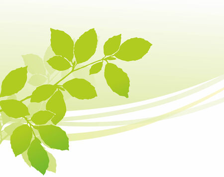 early summer: simplified illustration of a green twig during early summer