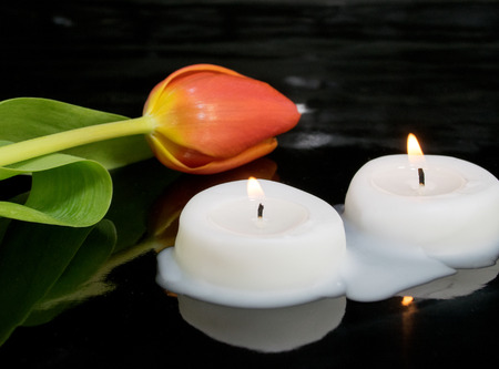 condolence: candles with tulip as metaphor and funeral decoration Stock Photo