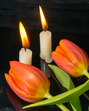 mourn: candles with tulips as metaphor and funeral decoration Stock Photo