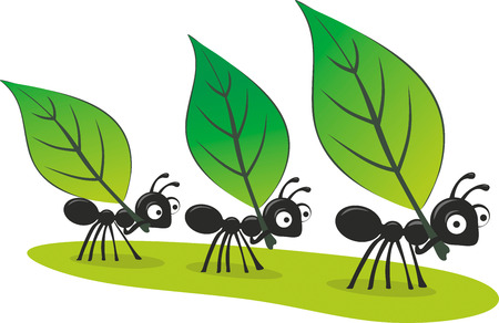 three illustrated ants carrying three big leaves photo