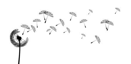 decorative background with flying seeds of a dandelion Ilustração