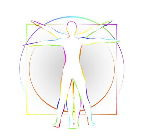 고전적인 그림은 인간의 신체 비율을 표시합니다