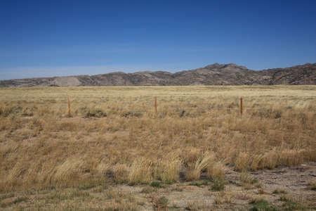 great plains: Wyoming Grassland - Great Plains