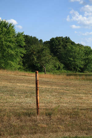 Barbed Wire Fence Post. A rural barbed wire fence and post. photo
