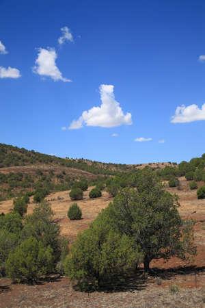 southwest: American Southwest - Arizona Landscape Prairie with hills