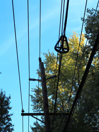 electric line: Telephone Lines - Phone and power electric lines overhead through a line of trees.