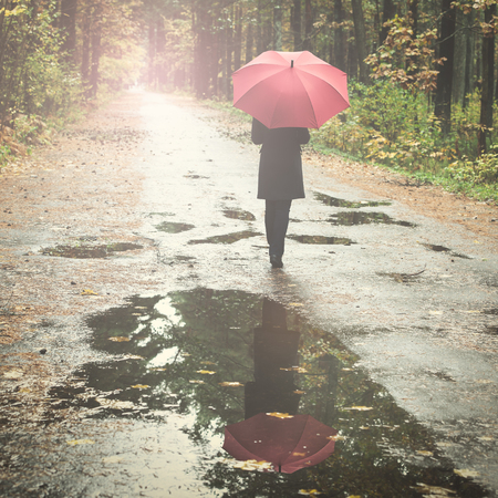 forest path: Woman with umbrella walking on forest path in rainy autumn day