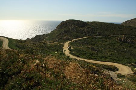 path in the bush in corsica france photo