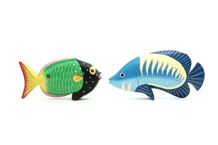 two coloured exotic fishes facing on isolated background photo