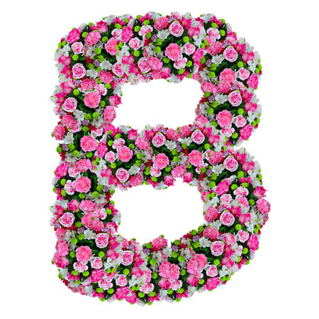 closeup of pink daisy with: B, flower alphabet isolated on white with clipping path Stock Photo