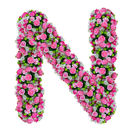 letter head: N, flower alphabet isolated on white with clipping path
