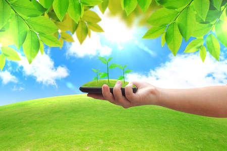 energia renovable: Concepto de energ�a verde