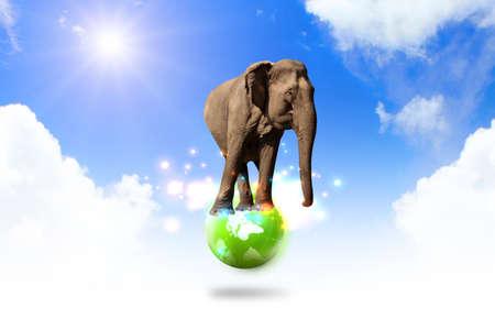 elephant balancing on world Stock Photo