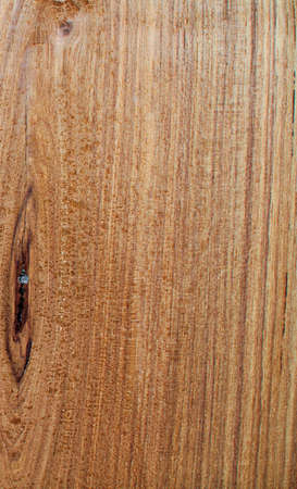 pattern of teak wood photo