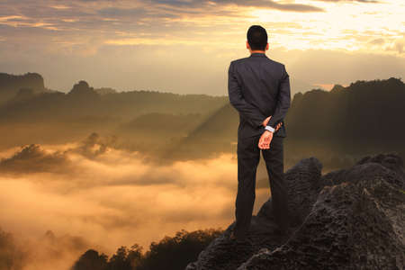 standing businessman: Businessman looking to the mountain view. Stock Photo
