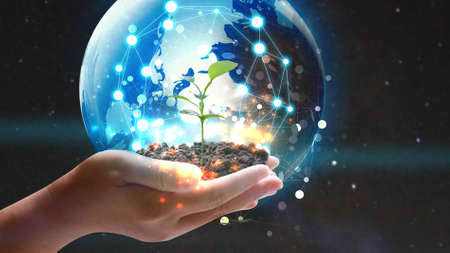 Hand holding globe with green plant growing . Environmentally friendly concept