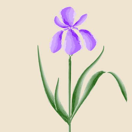 Zeichnen Aquarell, Iris, ein globales Farbe