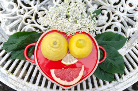 cheerful face composed of lemon, leaves and elderflower, funny face made of natural ingredients 스톡 콘텐츠