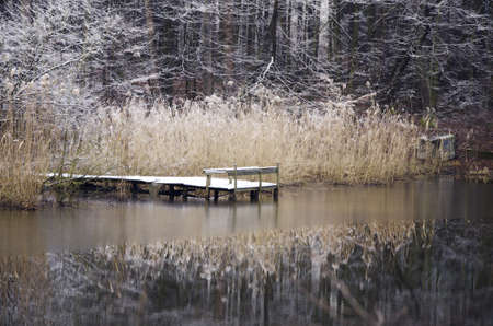Foresty winter lake or pond in the woods. Trees reflections. Snow covered woods background. Tall trees, firs in woods stand under deep layer of snow in winter.