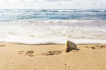 Spuren auf einem Sandstrand