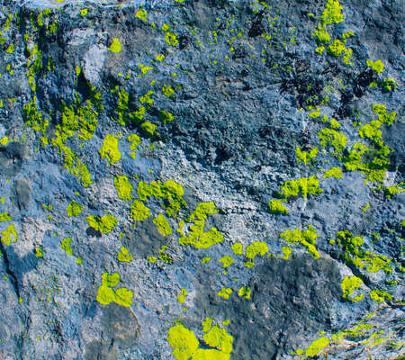 Texture natural background stone amd moss Stock Photo