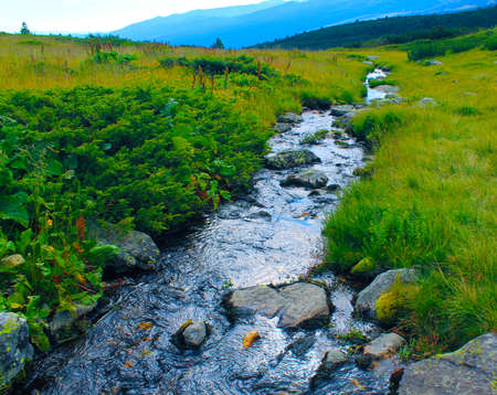 High mountain river perspective closeup in a sunny spring day Stock Photo