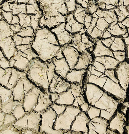 cracked dry soil after haevy rain ground top close up