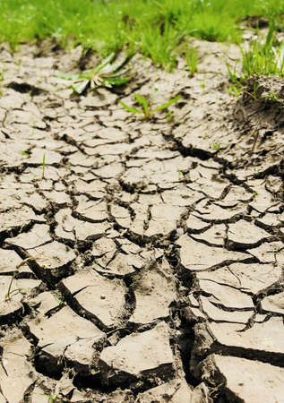 cracked dry soil after haevy rain ground perspective with grass