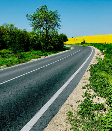 road way on a bright sunny day in spring time perspective travel concept
