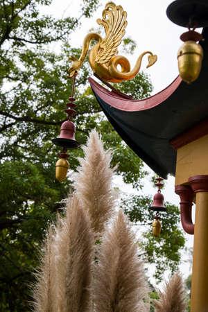 closeup of particular pagoda cover in park 版權商用圖片 - 99604999