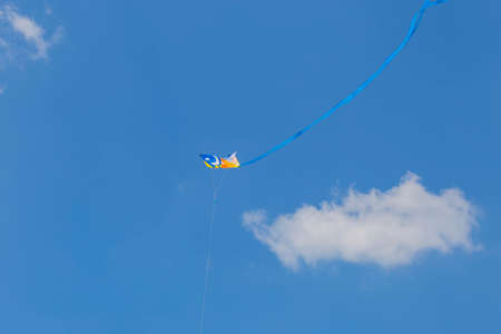 mage of a kite flying in the blue sky with a long blue ribbon