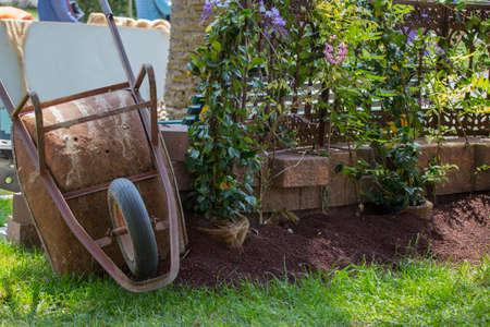 image of an old rusty wheelbarrow used in the park