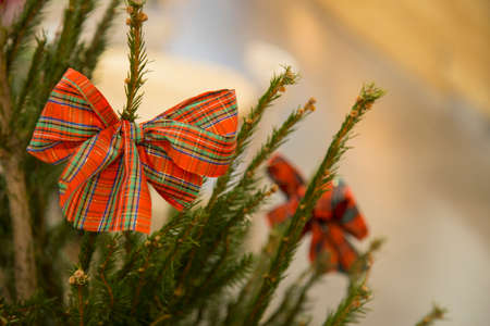 horizontal image with detail of a Scottish fantasy Christmas bow hanging on the branch