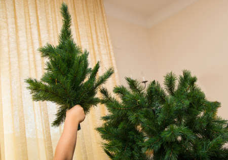 particular assembly of Christmas tree with child copia